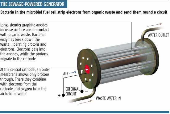 New Gas Source Free Energy E Is For Energy